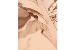 livre manga
